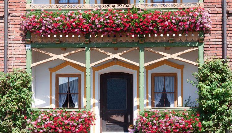 Ratusz zaprasza do udziału w konkursie na najpiękniejszy balkon i ogród